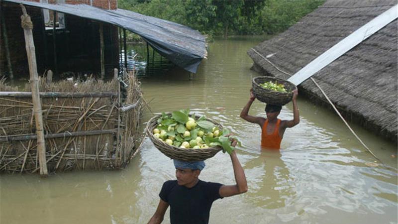 मुख्यमंत्री श्री अखिलेश यादव ने बाढ़ की स्थिति में बचाव और राहत कार्याें के लिए कार्य योजना बनाने के निर्देश दिए