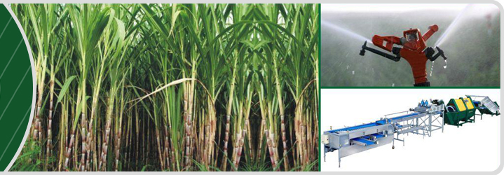Agro Park Lucknow and Varanasi